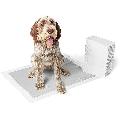AmazonBasics - Tappetini igienici con carbone attivo per l'addestramento di cagnolini e altri animali domestici, misura extra-large, 30 pezzi