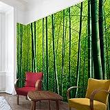 Apalis Tapete Vliestapete Bambuswald Fototapete Breit | Vlies Tapete Wandtapete Wandbild Foto 3D Fototapete für Schlafzimmer Wohnzimmer Küche | grün, 94543