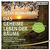 Das geheime Leben der Bäume: Was sie fühlen, wie sie kommunizieren - die Entdeckung einer verborgenen Welt - Mit Bonus-CD: Wie ich Förster wurde - der Autor im O-Ton - Peter Wohlleben