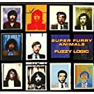 Fuzzy Logic (20th Anniversary Deluxe Edition) (2-CD Set)