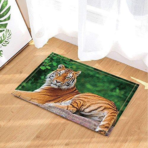 BuEnn Safari Animal Decor Wildlife Tigre liegend auf Stein gegen Wald grün Boden Antirutschmatte...