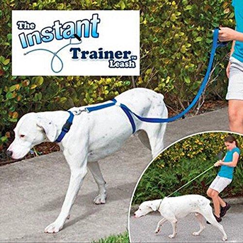 Coeus Instant Trainer Hundeleine 30 Lbs Stopp Pulling Dog Walk