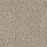 Teppichboden Auslegware Meterware Velours meliert beige grau 400 cm und 500 cm breit, verschiedene Längen, Variante: 5,5 x 5 m