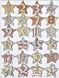 Adventskalenderzahlen 1-24 Sterne gold-silber aus Holz Creapop 3270101