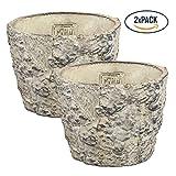 PTMD Übertopf Joye Cream Cement M, Set 2-tlg. / Blumentopf Pflanztopf in Stein-Optik - Maße: 11.0 x 14.0 x 14.0 cm