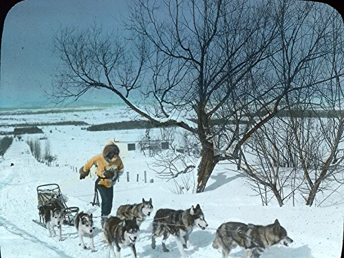 POSTER Winter sports in Quebec: dog sledding QC 1934 Montreal Quebec Canada Wall Art Print A3 replica