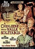 Il Cavaliere Della Valle Solitaria