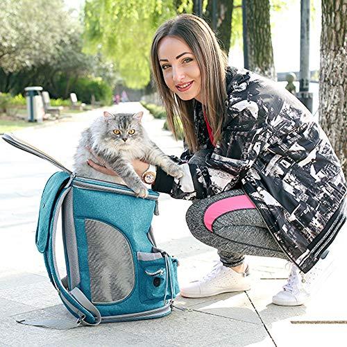 Joytutus zaino gatti pieghevole trasportino da viaggio per gatti piccolo cani borsa per viaggio in treno trasportino - fino a 7.5 kg