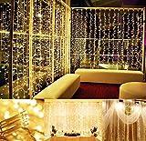Rocita 300 Led Lámparas Cortina de Luz Iluminación Luces Decorativas Interior Exterior Impermeables Cadena de Lámparas 3m*3m Navidad Bodas Cumpleaños Fiestas