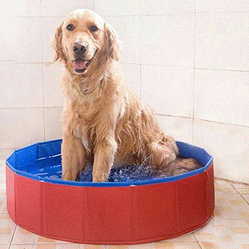 PVC Portable Foldable Dog Pet Swimming Pool Bathing Tub Bathtub Collapsible Dog Pool Tub Outdoor or Indoor, Pool for Pet (80cm x 20cm )