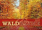 WALD UND BÄUME Kalender 2015