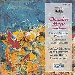 Kammermusik Mit Horn