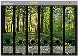 Wallario Ordnerrücken Sticker Waldanemonen und Sonnenstrahlen im Wald in Premiumqualität - Größe 36 x 30 cm, passend für 6 breite Ordnerrücken