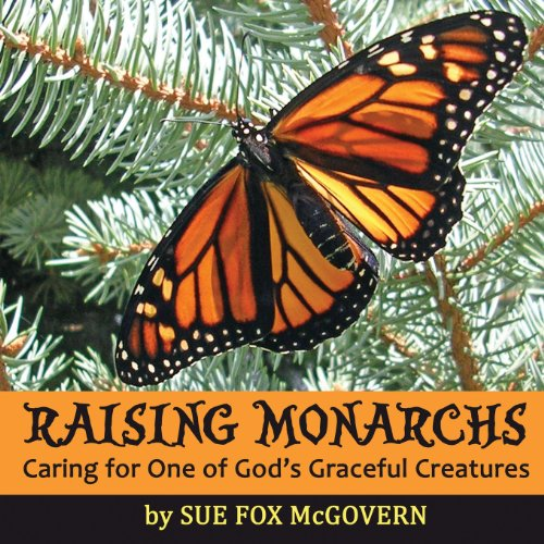 (Raising Monarchs: Caring for One of God's Graceful Creatures)
