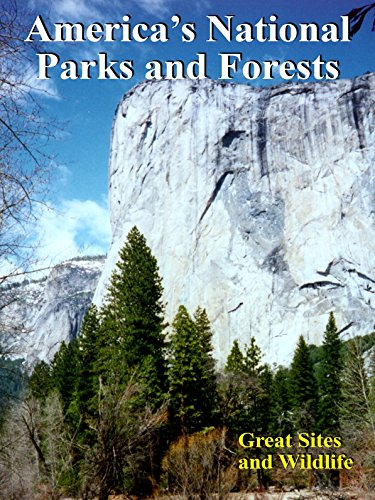 America's National Parks and Forests [OV] -