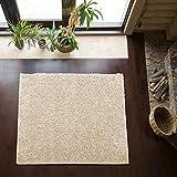 Shaggy-Teppich | Flauschiger Hochflor fürs Wohnzimmer, Schlafzimmer oder Kinderzimmer | einfarbig, schadstoffgeprüft, allergikergeeignet in Farbe: Creme; Größe: 150 x 150 cm quadratisch