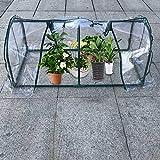 Tragbares Mini-Gewächshaus für drinnen und draußen, Blumenhaus, Gewächshaus, Gewächshaus, Zelt wasserdicht und UV-geschützt, 59,9 x 127 x 57,9 cm