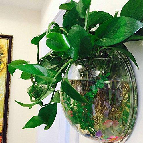 An Der Wand Befestigte Fisch-Behälter-Hängende Blumen-Topf-Pflanze Vase Kreative Acryl-Wand-Aquarium-Startseite-Dekoration