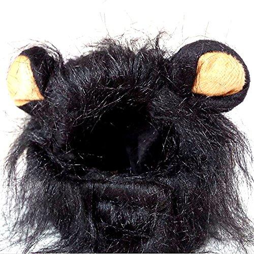 we Mähne Perücke Kostüm Hat Head Kapuze niedliche Verstellbare waschbar bequeme Löwe Hair Dress Up für Halloween Weihnachten Ostern Festival Party Aktivität für Pet Kleine Hunde und Katzen (Hulk Dress Up Für Kinder)