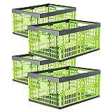 Grizzly Cassetta Pieghevole - Contenitore Portaoggetti Utile Come Bacinella - Cassetta per Bottiglie - Porta Bucato - per Alimenti- Frutta e Verdura - Set da 4 Pezzi
