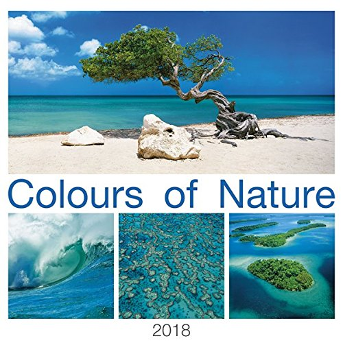 Wall Calendar Colours of Nature 2018 42 x 42 cm