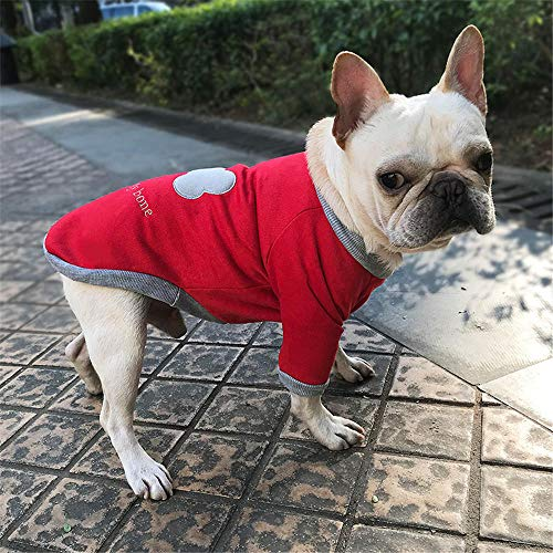 Jcloris Pet Clothing Pet Fashion Clothing Puppy Dog   Sweater Dog Comfort@Rot_XL (Baby Dackel Kostüm)