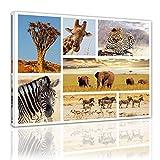 Kunstdruck - Afrika Collage II - Bild auf Leinwand - 80 x 60 cm - Leinwandbilder - Bilder als Leinwanddruck - Tierwelten - Fotocollage - afrikanische Tiere