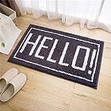 GLP Willkommen Fußmatten Non Slip Carpe für Eingang/Wohnzimmer im Freien Pad saugfähig schnell trocknend Indoor Teppich Faser schmutzabweisend Foot/Door Mat (Color : C, Size : 45 * 60cm)