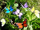Butterfly Garden Ornaments & Patio Decor Butterfly Party Supplies Butterfly Decorations for Garden & Flo Butterfly Crafts 12 Pcs Set - To Hearts 2 - amazon.co.uk