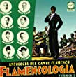 Flamencologia Vol.5