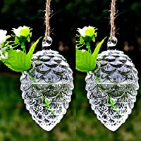 Artlass Set Of 2 Hanging Glass Terrarium Air Plant contaciner Vase Pine Cone Shape