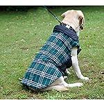 IREENUO Dog Reversible Plaid Coat Autumn Winter Warm Cozy Waistcoat British Style Dog Padded Jacket for Small Medium… 14