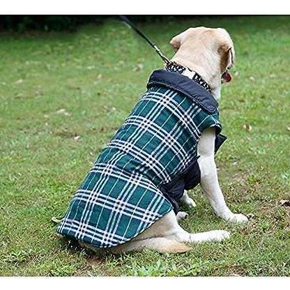 IREENUO Dog Reversible Plaid Coat Autumn Winter Warm Cozy Waistcoat British Style Dog Padded Jacket for Small Medium… 7