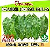 Omura ORGANIC SOURSOP Leaves Graviola 200 Leaves