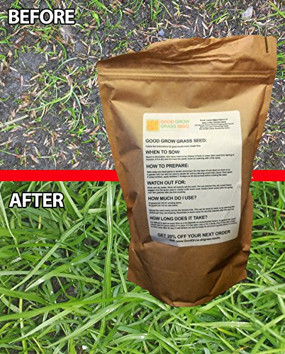 hard-wearing-grass-seed-fast-growing-premium-grass-seed-tough-uk-tailored-for-lush-green-lawns-in-su