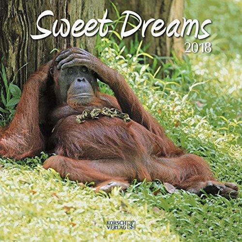 Sweet Dreams 2018: Broschürenkalender mit Ferienterminen. Süß schlafende Tiere. 30 x 30 cm (Wand-kalender Blumen)