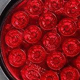 Ocamo High Power LED Rücklicht Blinker Licht für Trailer Oder Container LKW Ford Tonabnehmer Rot
