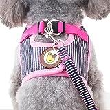 Hunde Geschirr Bowknot Brustgeschirre Air Mesh Harness Vest für Kleine, Mittelgroße Hunde Welpengeschirr mit 1.2M Hundeleine Katzen Walking Leine Hundegeschirr und Pet Leash (XL, Pink)
