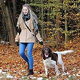 Hundeleine – Premium Multifunktionsleine – 4-fach längenverstellbar – 2m lang - 7