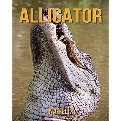 Alligator: Le livre des Informations Amusantes pour Enfant & Incroyables Photos d'Animaux Sauvages – Le Merveilleux Livre des Alligator pour enfants âgés de 3 à 7 ans