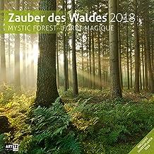 Zauber des Waldes 30x30 2018
