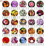 #2: Kraft Seeds 25 Varieties of Flower Seeds Heirloom Seed For Your Garden 600+ seeds Beautiful Bloom This Season Genuine High Germination Seeds