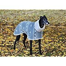Hermosa gruesa cálido, de Whippet Greyhound abrigo por perro y casa