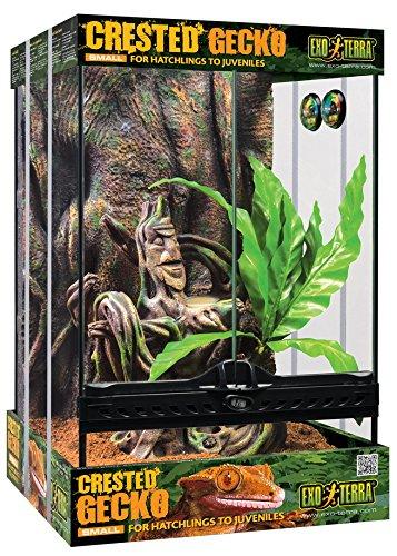 Exo Terra Kit Terrario Cresta Gecko Pequeño, 30 x 30 x 45 cm