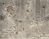 Wand Schurken wr50520Beton Wand gebrochen–Wand einkleistern Tapete Wandbild–300cm x 240cm–Grau