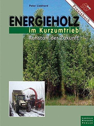 Energieholz im Kurzumtrieb: Rohstoff der Zukunft