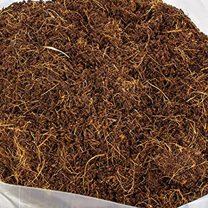 PLANT !T Potting Soil-Expands to 15L, Brown 3