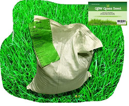 1kg Grassamen für 35 Quadratmeter in Premiumqualität-schnell wachsende und widerstandsfähige Rasensamen-hervorragende Wassertoleranz-43% Weidelgras, 40% Rotschwingel 12% Chewing Fescue und 5% Top