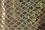 ASVP Shop® Meerjungfrauen-Stoff, Fischschwanz-Stoff, Material mit dehnbarem Spandex, Lycra–145cm breit Silver / Large Print