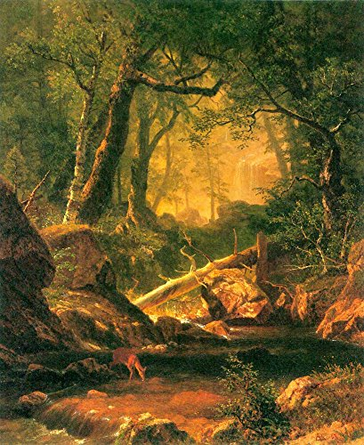 Die Museum Outlet-White Mountains, New Hampshire 2by Bierstadt-Leinwand (61x 81,3cm)